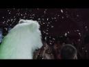 Свадебный клип Максим и Инна 11.08.2017💍