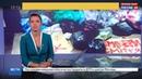 Новости на Россия 24 • Львовские пользователи ВКонтакте забросали мусором магазин Порошенко