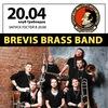 Brevis Brass Band | 20 апреля | Грибоедов