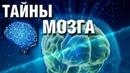 СЕНСАЦИЯ ИЛИ ПРОВОКАЦИЯ - Во власти разума Документальные фильмы, детективы HD