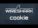 Kali Linux 1.1: Крадем cookies (Wireshark) в Wi Fi сетях