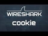 Kali Linux 1.1 Крадем cookies (Wireshark) в Wi Fi сетях