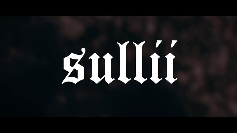 Sullii - P A L L E T T O W N