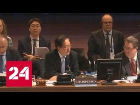 Страны ОДКБ поддержали Россию на конференции ОЗХО по Сирии - Россия 24