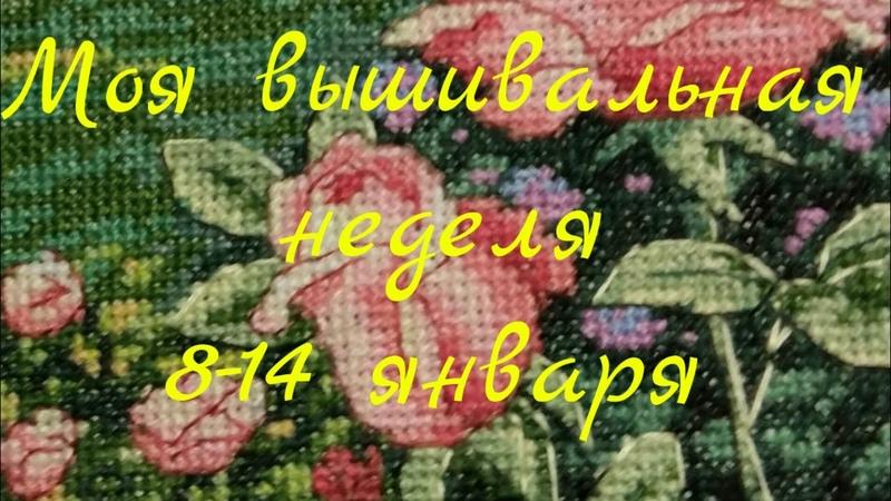 127 Вышивальная неделя с 8 по 14 января/Новый процесс