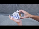 MIX 08 DEMOS - CARDISTRY BY TOBIAS LEVIN.mp4
