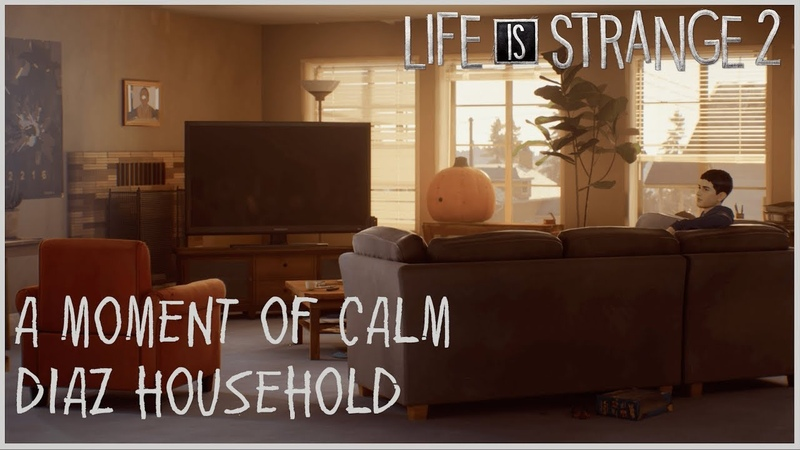 A Moment of Calm - Diaz Household
