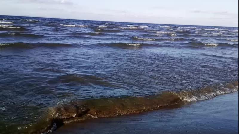 Волга 🌊