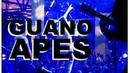Галилео. Guano Apes