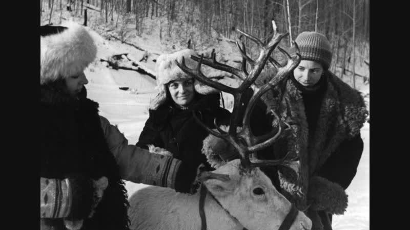 Продаётся Медвежья шкура ( 1980 ) ...