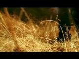 SHON MC Комилчон Зарипов - Наход SHON MC Komiljon Zaripov - Nakhod (2013)