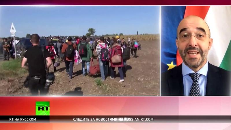 Официальный представитель правительства Венгрии Брюссель создаёт опасный прецедент