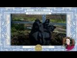 Сертификат о прохождении Final Fantasy XV