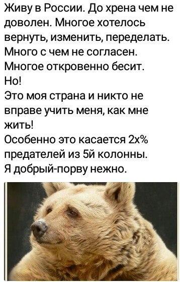 https://pp.userapi.com/c845221/v845221205/1190a/QY9jaim0auk.jpg