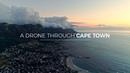 A Drone Through Cape Town Rhino Africa