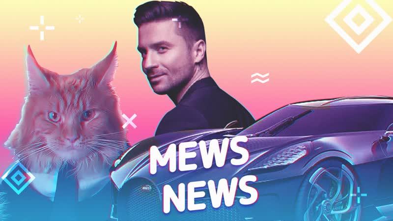 Mews News Лазарев Суперкар и кот молочник