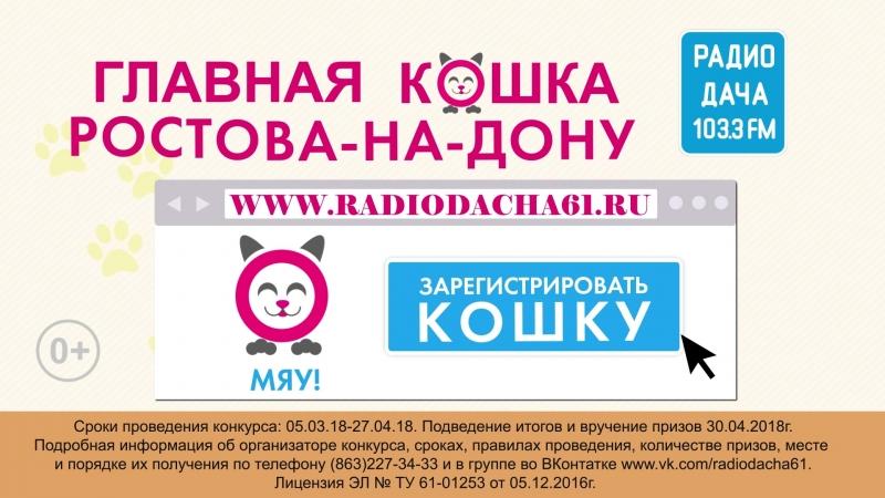 Радио Дача - Главная кошка Ростова на Дону