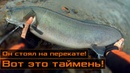 Большой таймень на мощную снасть Сибирь Спиннинг