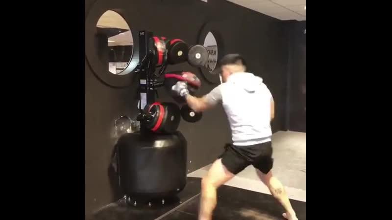 Strength of Body. Хороший тренажер для тренировки ударов