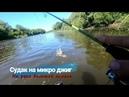 Судак на микро джиг на реке большой кинель