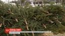 На Софійській площі почали розбирати головну ялинку країни
