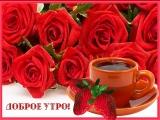 doc416011072_469535946.mp4