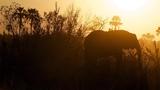 Eleve - Elephants (Original Mix)
