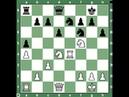 Итальянская партия. Карлсен – Адамс. Конь на f5