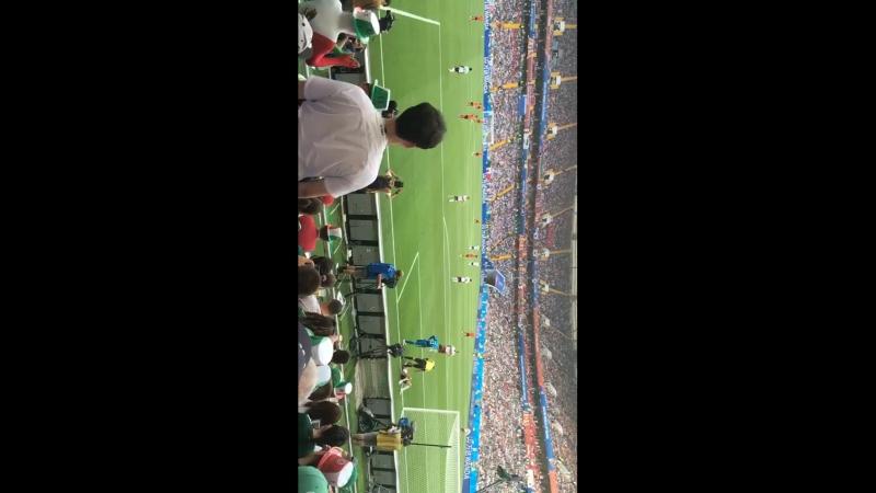 Игра сборной Мексики и Южной Кореи на стадионе ростов арена