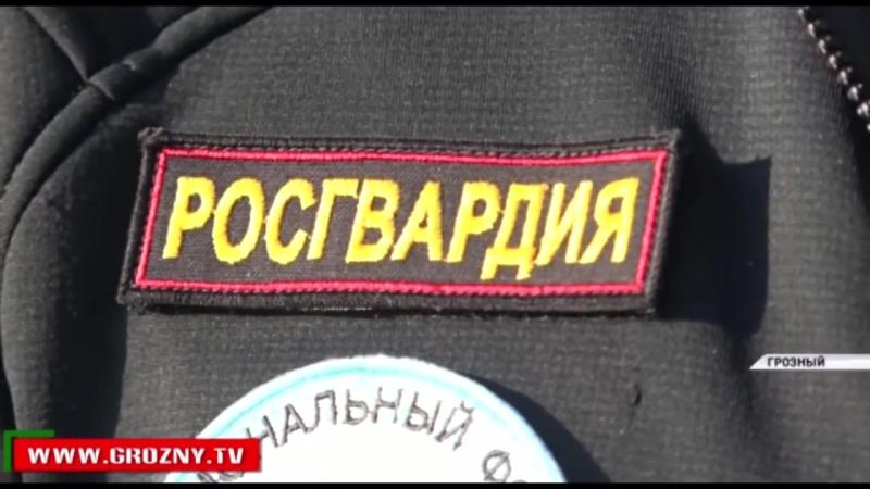 Росгвардия в Арктике | Специальные подразделения России | СПР