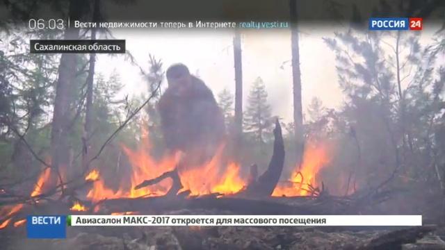 Новости на Россия 24 • Две недели на Сахалине не могут потушить лесной пожар