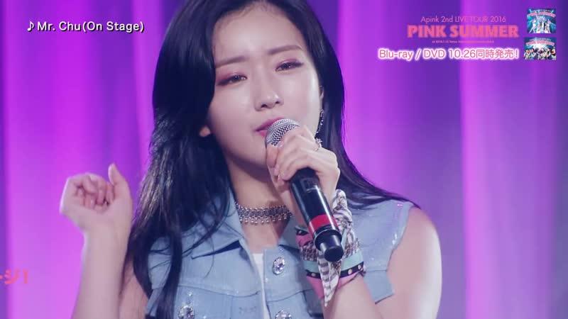 (161018) Pink Summer DVD Teaser