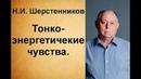 Шерстенников Н И Тонкоэнергетические чувства