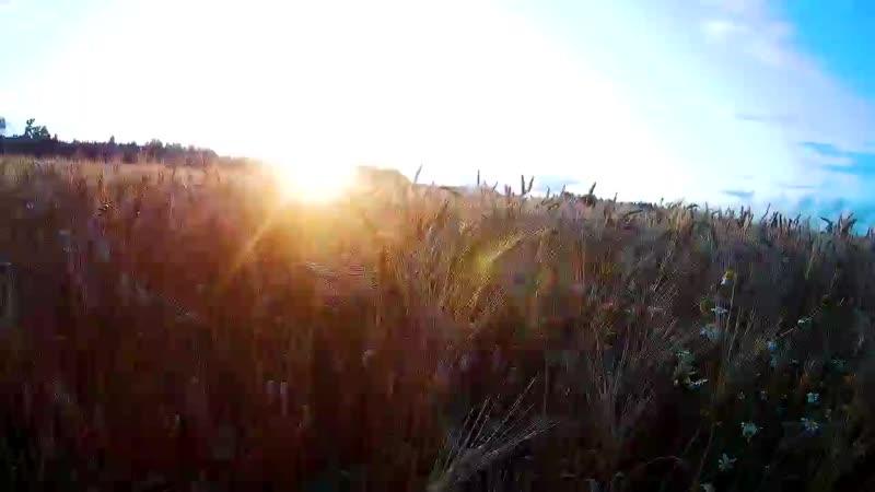 Закат Горки Рузский район 26 08 2017 Уходящее лето