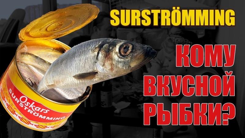 Отведали сюрстрёмминга Шведская ферментированная селедка