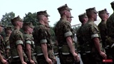 United States Army Corps start to protect and defend Europe from black &amp muslim invasion.