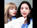 Beulmorning from Lisoo bby 😘💘 • • Jisoo BLACKPINK 블랙핑크 BLINK ygentertainment ygent Lalisa Lisa Jennie ROSÉ kpop