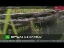 НТВ Орловские чиновники вынудили 85 летнюю пенсионерку ползком добираться до магазина