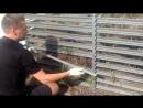 Как достать созревший компост из компостера Плодородие