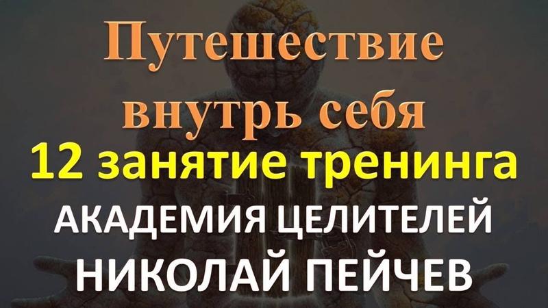 12 занятие тренинга Путешествие внутрь себя Академия Целителей Николай Пейчев