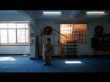 少林七星拳技击分享