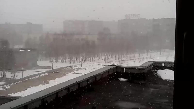 Погода в Оленегорске