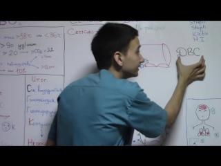 Сепсис - Познаю медицину