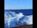 Решили сгонять на остров Косумель.В день, когда мы плыли на этот остров,на море был небольшой шторм , так что всю дорогу нас нех