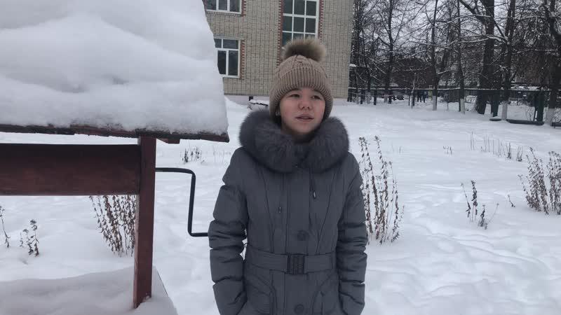 Дорошенко Виктория Романовна читает стихотворение Татьяны Булычёвой Диво дивное снежинки