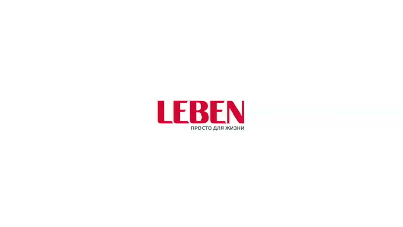 Видео обзор техники LEBEN Тостер LEBEN 650 Вт 1080p mp4
