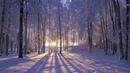 ♫Musica relaxante para tranquilizar a mente, aliviar o estresse, e lindas paisagens!