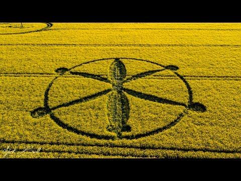 Crop Circle del 2018 Willoughby Hedge, Wiltshire. Inglaterra 8 de Mayo
