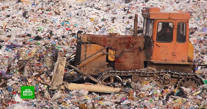 Мусорная реформа что собой представляет новая система утилизации отходов