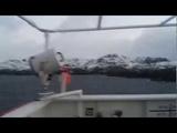 MV Star Mistral in starait of Magellan пролив Магеллана